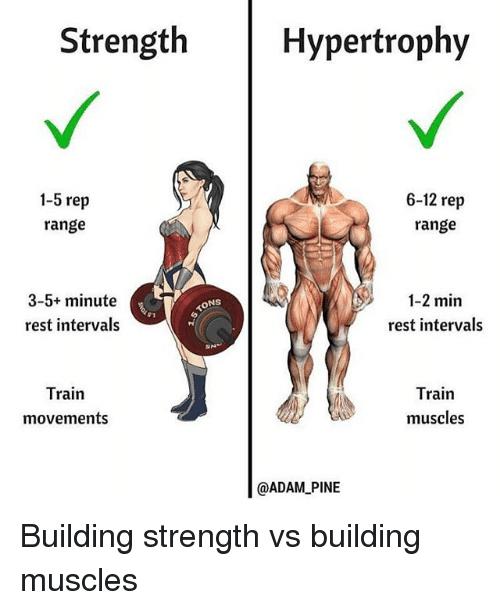 strength-hypertrophy